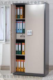 国保G1992保密柜 档案保密柜 文件保险柜