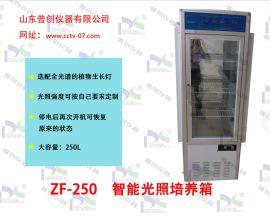 山东普创仪器 智能光照培养箱型号:ZF-250