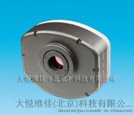 330万像素CCD彩色显微镜数码摄像头