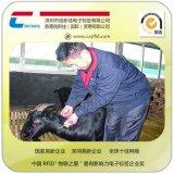 专业生产RFID电子标签 动物成长监测监控 环保动物耳标,厂家生产,牲畜溯源养殖,家畜牲口农场畜牧业养殖管理