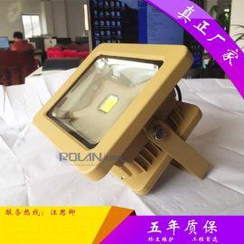 集成光源 50W LED防爆投光灯