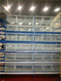 中州牧业批发全自动层叠养鸡设备镀锌鸡笼阶梯鸡笼