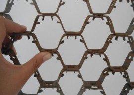 不锈钢龟甲网 (重型002)