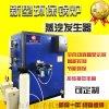 燃煤蒸汽發生器 電加熱鍋爐