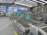 新疆大枣风干机多少钱一台 连续式红枣风干机