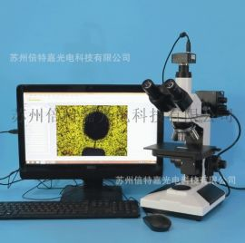 L2003-T1000型金屬材料檢測三目金相顯微鏡