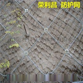 柔性边坡防护网,山坡防护网,成都专业边坡防护网厂家