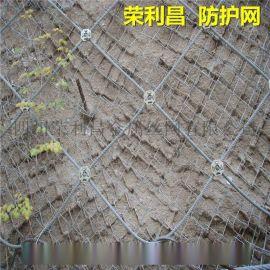 柔性邊坡防護網,山坡防護網,成都專業邊坡防護網廠家