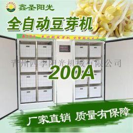商用豆芽机  黄绿豆芽机  自动控温淋水豆芽机