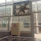 玻璃温室大棚强制通风 宜恩农业建造