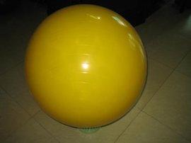 健身/瑜伽球 (YH-GYM)
