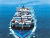 内贸物流集装箱软件;集装箱海运系统
