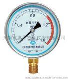 惠华牌压力表|YN-100|耐震压力表|无锡市惠华特种仪表有限公司