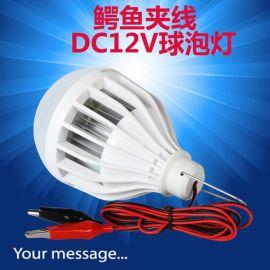 豫旺低压电瓶球泡灯 DC12V节能环保电瓶球泡灯