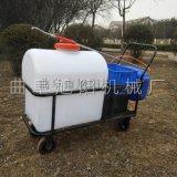 厂家直供旭阳推车式打药机园林打药喷雾机