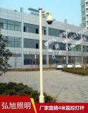 揚州弘旭生產監控杆銷售4米鍍鋅監控杆