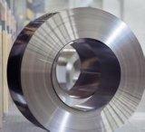 SUS301不锈钢弹簧片,高硬度镀镍不锈钢带