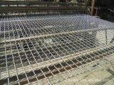供应优质盘条轧花网,镀锌轧花网,轧花网价格,装饰轧花网。