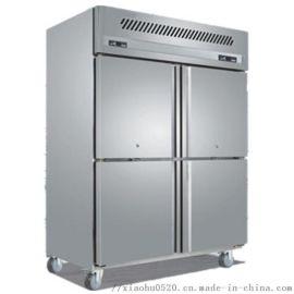 厨房立式冷冻柜 大型冰柜多少钱 厨房专用冷柜