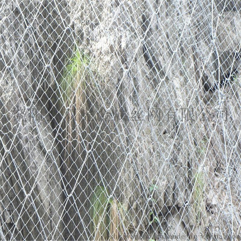 挂网铁丝网 镀锌勾花网 边坡喷播勾花网