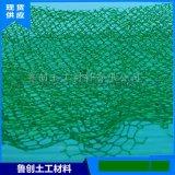 护坡绿化厂家三维植被网 山东泰安诺联三维植被网
