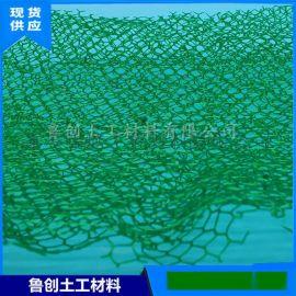 護坡綠化廠家三維植被網 山東泰安諾聯三維植被網