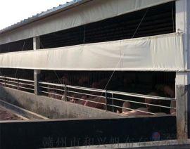 定制猪场控温卷帘布 防水鸡场牛场卷帘蓬布