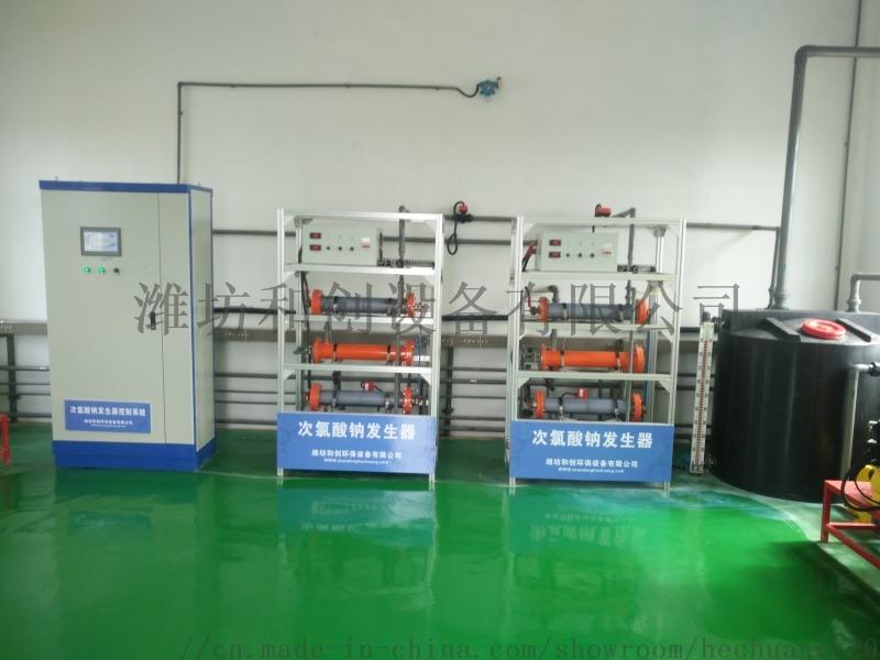 水廠次氯酸鈉發生器/甘肅水廠消毒設備