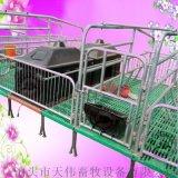 猪用设备2.2*3.6双体母猪产床,单体母猪产床