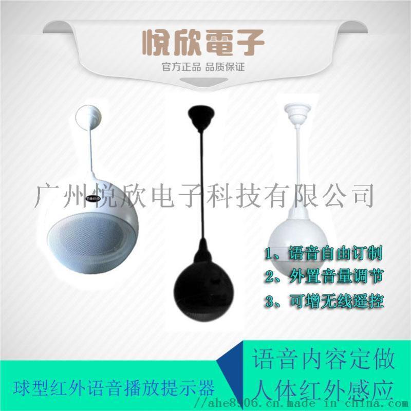 吊顶式人体红外感应语音提示器