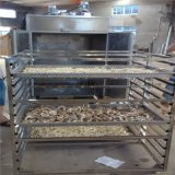 陳皮桔子皮烘乾機 熱風迴圈烘箱 迴圈烤箱烘乾箱