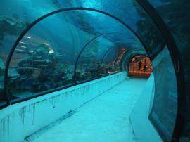 广州洋清海洋生物主题展览出租  美人鱼海狮表演租赁
