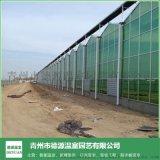 蔬菜玻璃智慧溫室控制-德源溫室