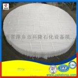 125Y/250Y/350Y塑料波纹填料氨法脱