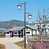 厂家生产中式双头庭院灯 AE照明定制3.5米园林中式高低头庭院灯