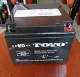 TOYO东洋6GFM24 12V24AH太阳能直流屏UPS/EPS 铅酸免维护蓄电池