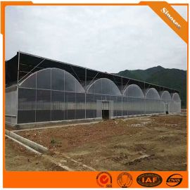 蔬菜温室大棚建设厂家 专业建造温室大棚