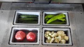 盒式充气保鲜真空机 大型厂家设备食品真空包装机 保鲜真空封口机