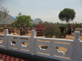 水泥仿石扇形、雕花汉白玉河堤桥梁护栏厂家