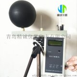 职业卫生检测设备WBGT热指数仪 WBGT-2006黑球湿球温度计