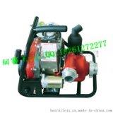 WICK-250 森林消防泵高壓水泵 攜帶型森林消防泵 攜帶型消防泵廠家