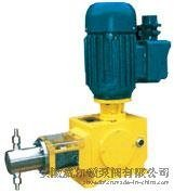 皖威尔顿J-W型柱塞式计量泵