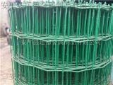 运德护栏网供应荷兰网、波浪护栏网、浸塑电焊网厂家直销、价格优惠_安平县运德护栏网厂