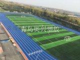 東營學校運動場塑膠跑道東營施工報價《新標準》