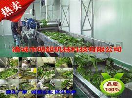 蔬菜清洗机  果蔬清洗流水线   -诸城明超机械