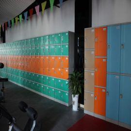 维格TOM-S ABS塑料环保更衣柜健身房塑料储物柜