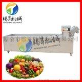 廠家直銷專業設計鼓泡式果蔬清洗機多功能水果適用 騰昇機械設備