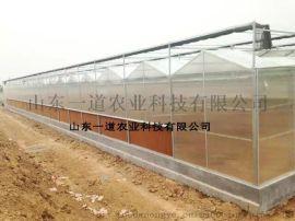 pc阳光板温室大棚 山东一道农业科技有限公司