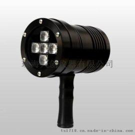 南京VM100便攜式黑光燈紫外線燈