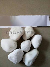 永顺供应园林白石子铺面用白色小石子 白色机制鹅卵石